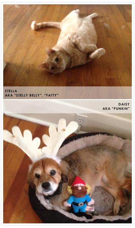 Stella + Daisy